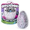 Spin Master Hatchimals Hatching Egg Bearakeet Deals
