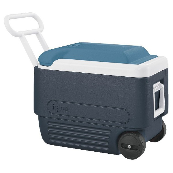 MaxCold Roller Cooler product image