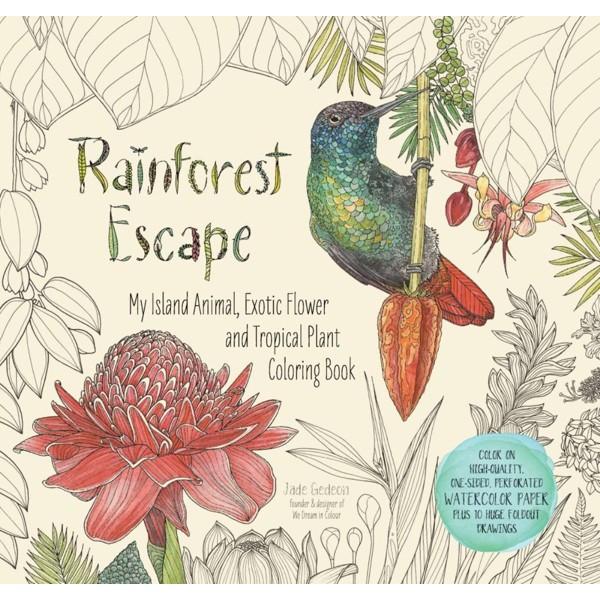 Rainforest Escape product image