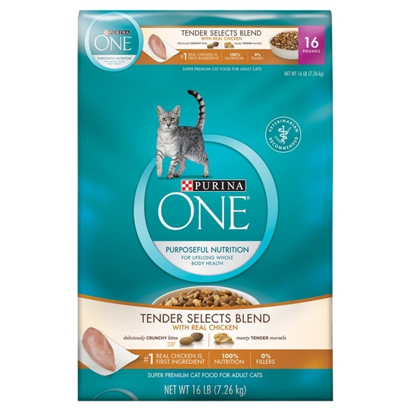 Purina ONE Cat food product image