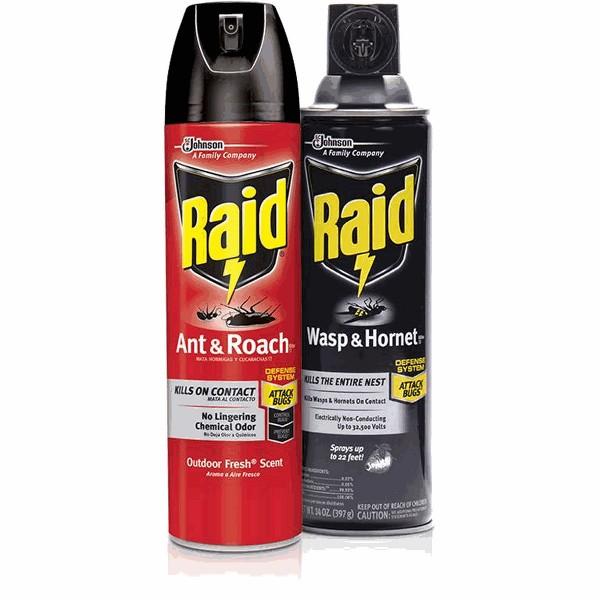 Raid product image
