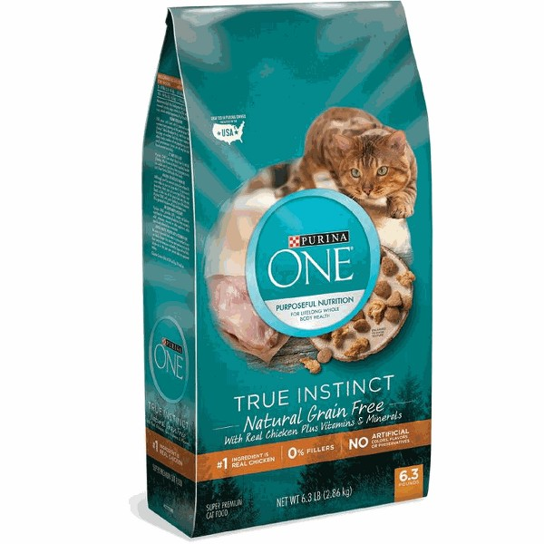Purina ONE Dry Cat Food product image