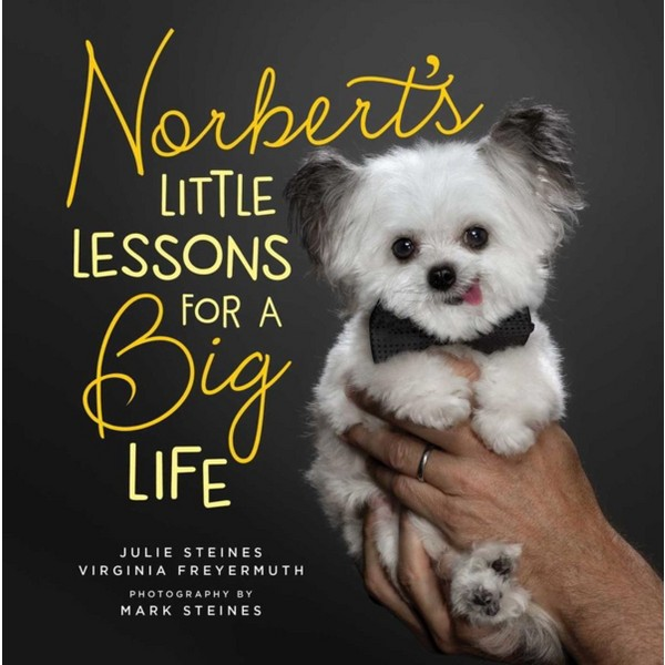 Norbert's Little Lessons product image