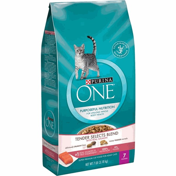 Purina ONE SmartBlend Dry Cat Food product image