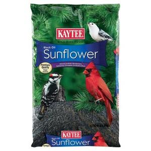 Kaytee Black Oil Sunflower Seed