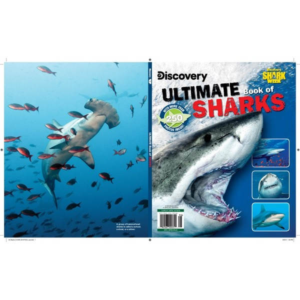 Discovery product image
