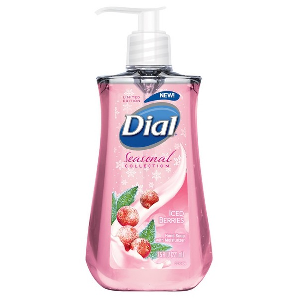Dial Seasonal Hand Soap product image